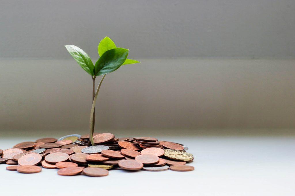 Foto von einem Münzhaufen, aus dem eine kleine grüne Pflanze wächst - finanziell wachsen.